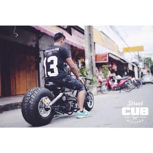 streetcub (1)